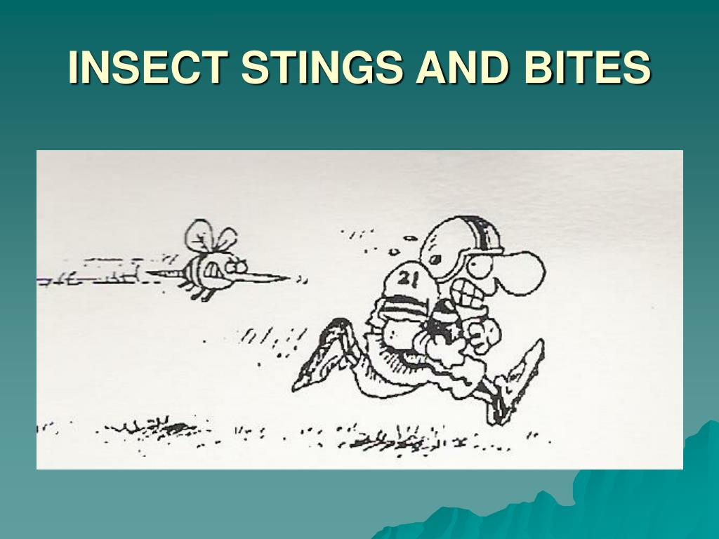INSECT STINGS AND BITES