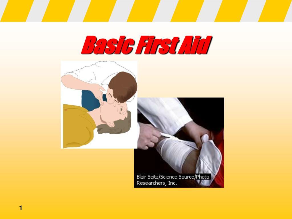 basic first aid l.