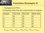 function example ii