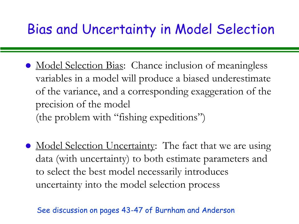 Bias and Uncertainty in Model Selection