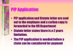 pip application