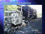 incidents timber collection2