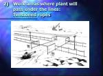 work areas where plant will pass under the lines tensioned ropes