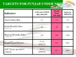 targets for punjab under nrhm