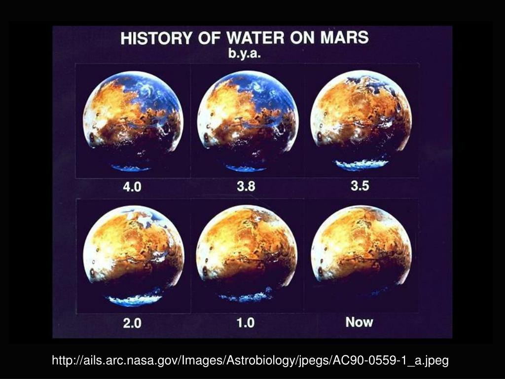 http://ails.arc.nasa.gov/Images/Astrobiology/jpegs/AC90-0559-1_a.jpeg