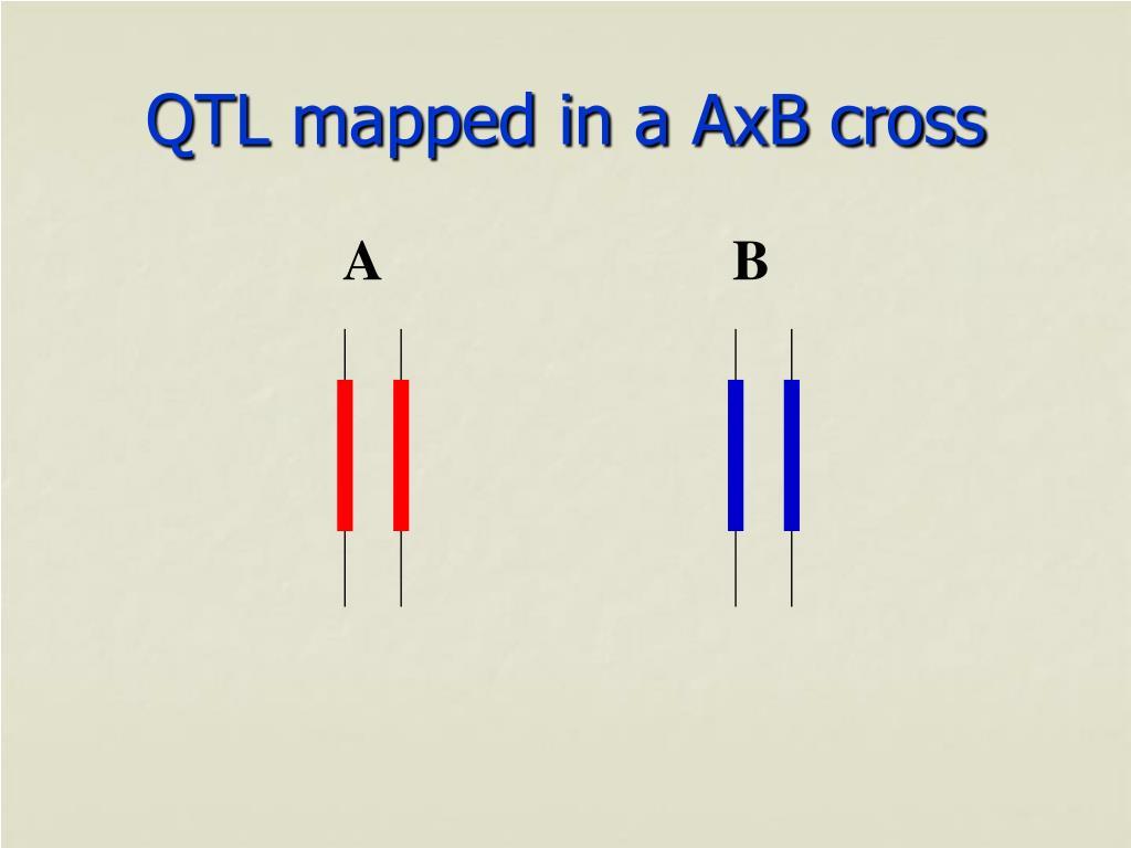 QTL mapped in a AxB cross