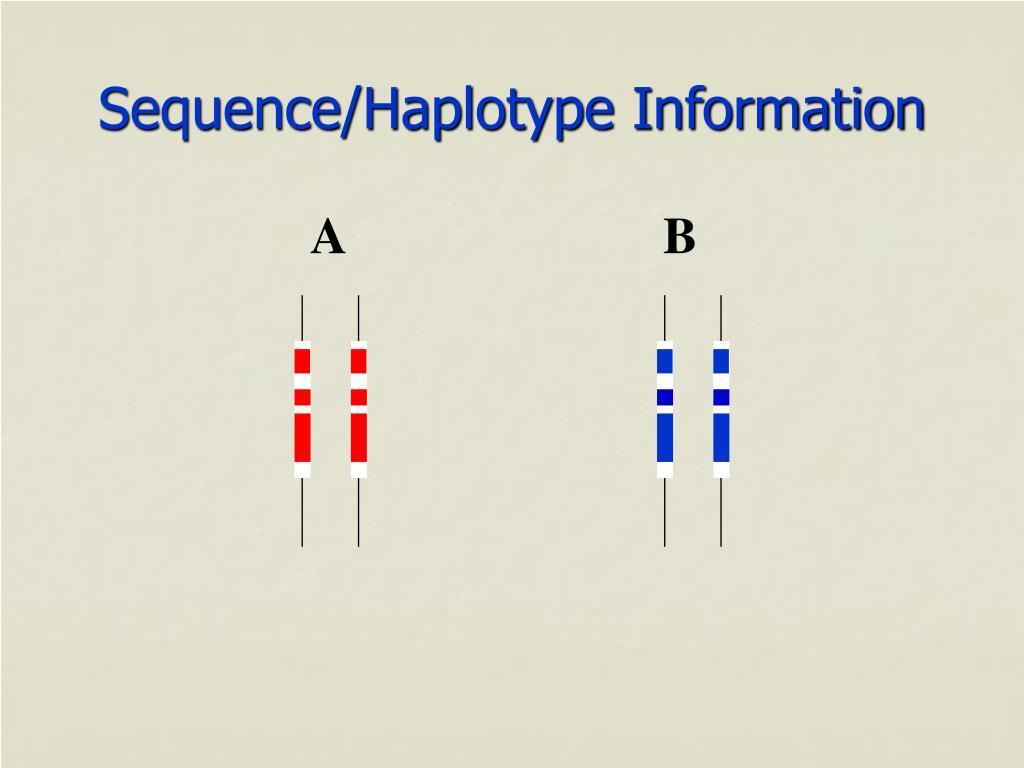 Sequence/Haplotype Information