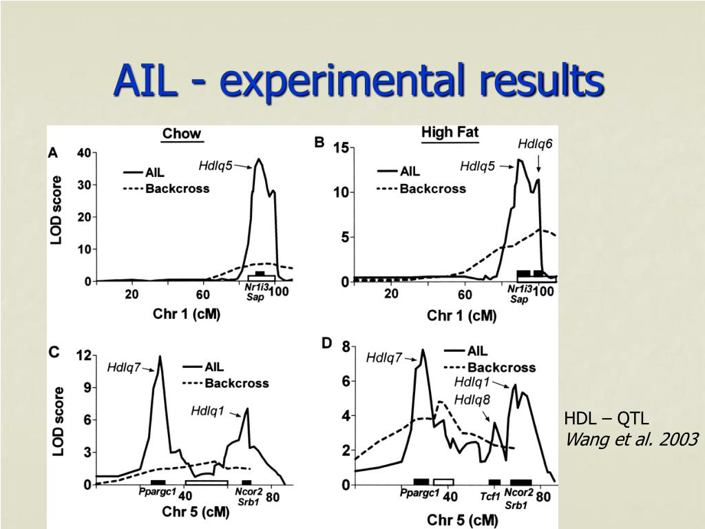 AIL - experimental results