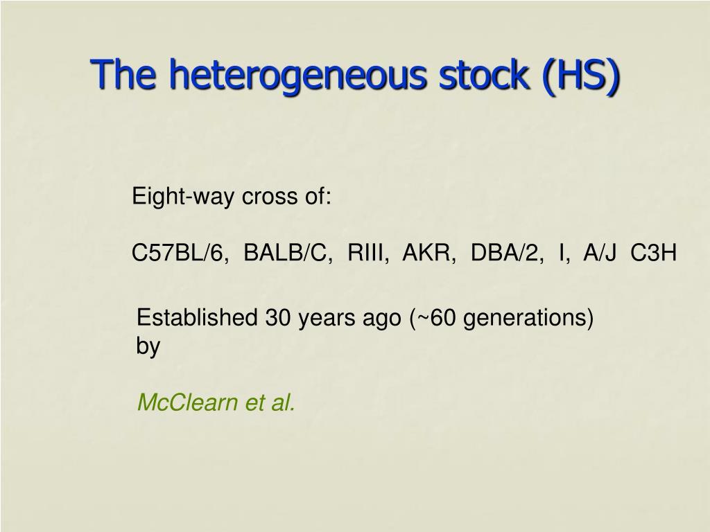 The heterogeneous stock (HS)