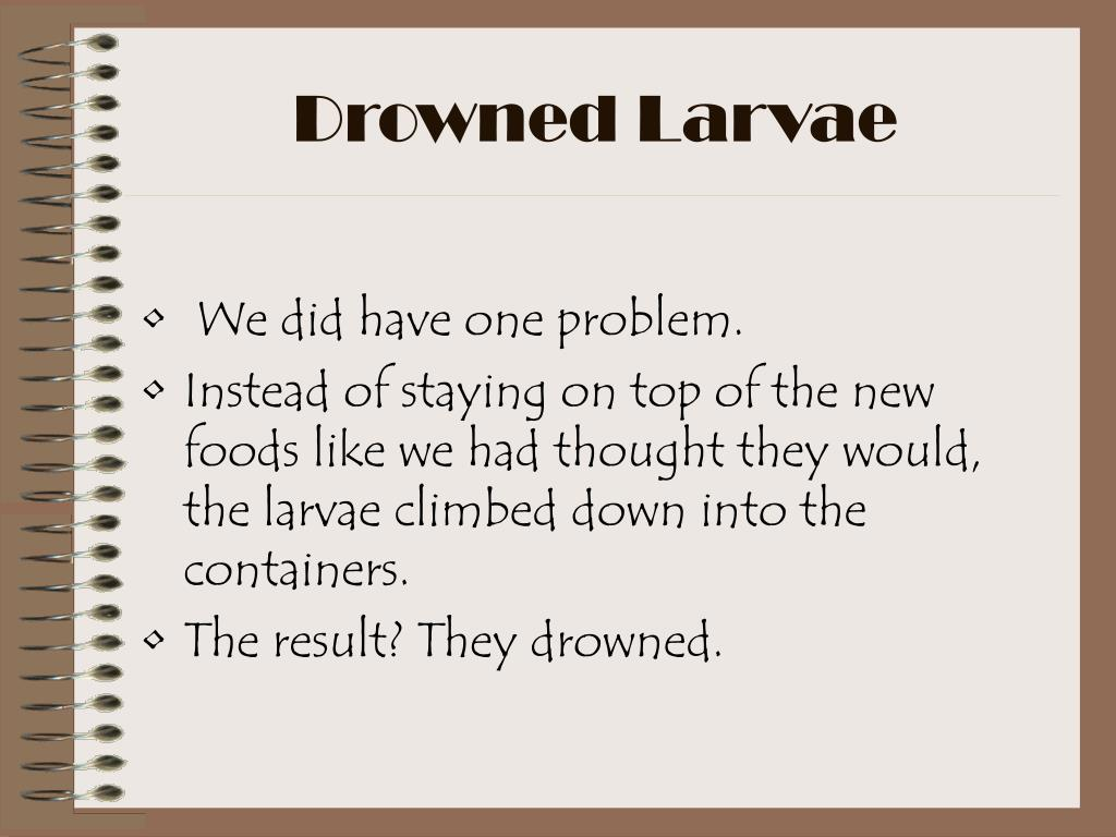 Drowned Larvae