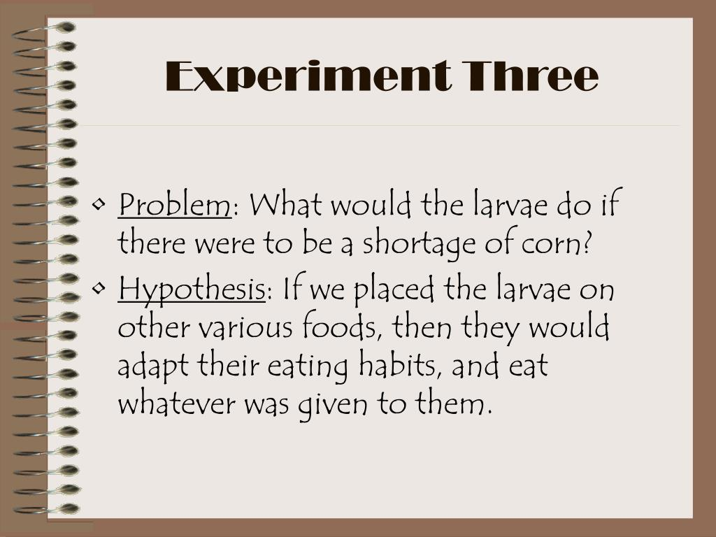 Experiment Three