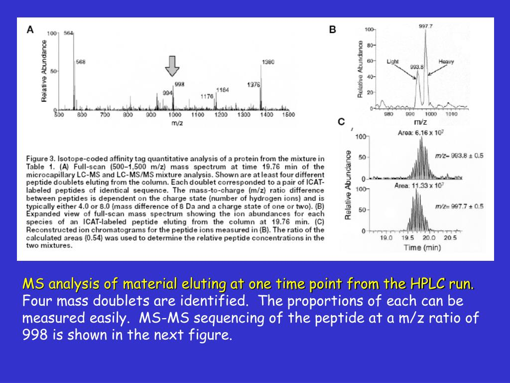 MS analysis of material eluting at one time point from the HPLC run.