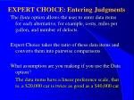 expert choice entering judgments87