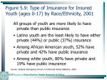 figure 5 9 type of insurance for insured youth ages 0 17 by race ethnicity 2001131