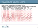traceroute routing loops