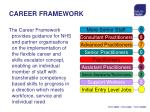 career framework