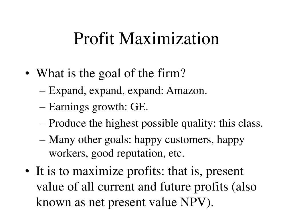 profit maximization l.