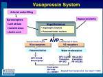 vasopressin system