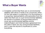 what a buyer wants