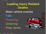 leading injury related deaths