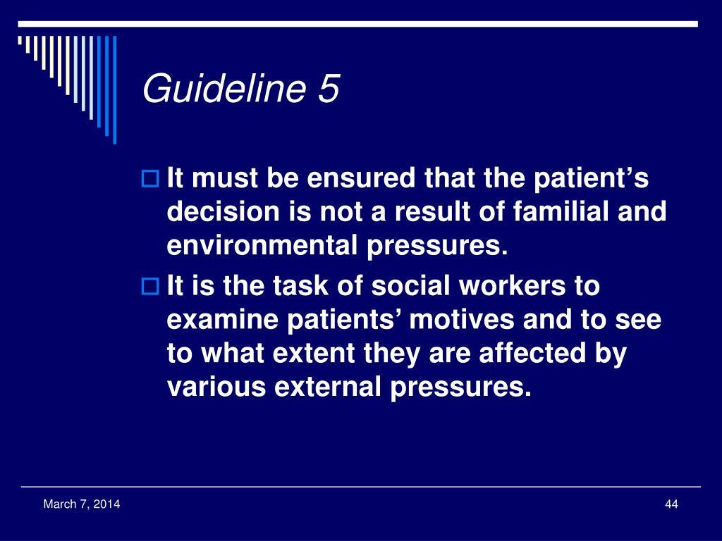 Guideline 5