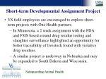 short term developmental assignment project24