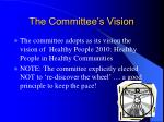the committee s vision