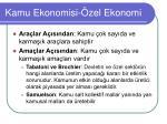 kamu ekonomisi zel ekonomi
