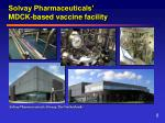 solvay pharmaceuticals mdck based vaccine facility