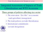 integrated assessment of impacts of trade liberalization and wto accession