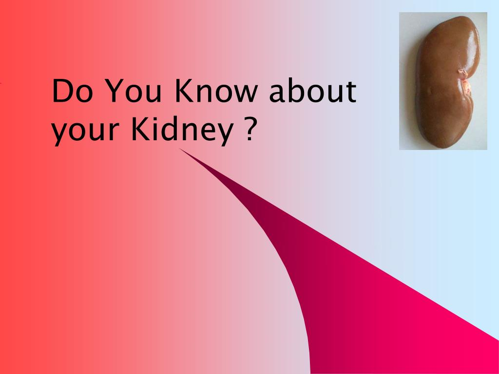 Do You Know about your Kidney ?