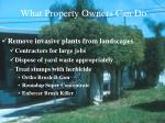 what property owners can do