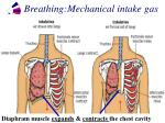 breathing mechanical intake gas