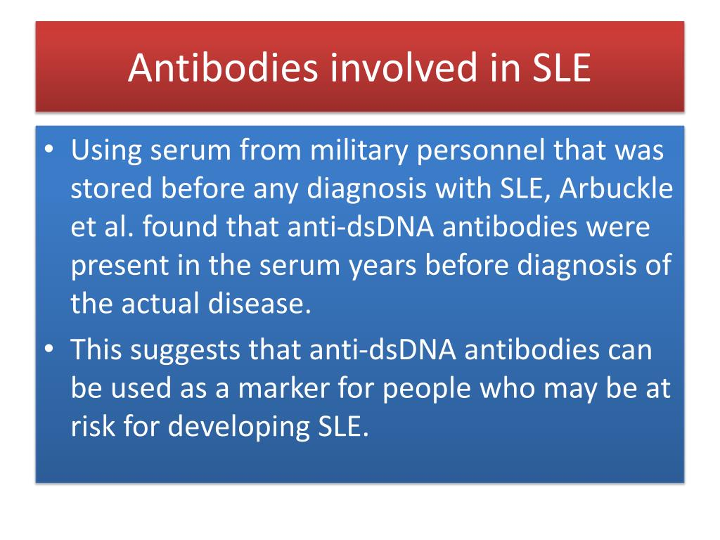 Antibodies involved in SLE