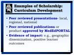 examples of scholarship curriculum development
