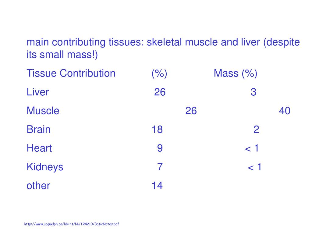 main contributing tissues: skeletal muscle and liver (despite its small mass!)