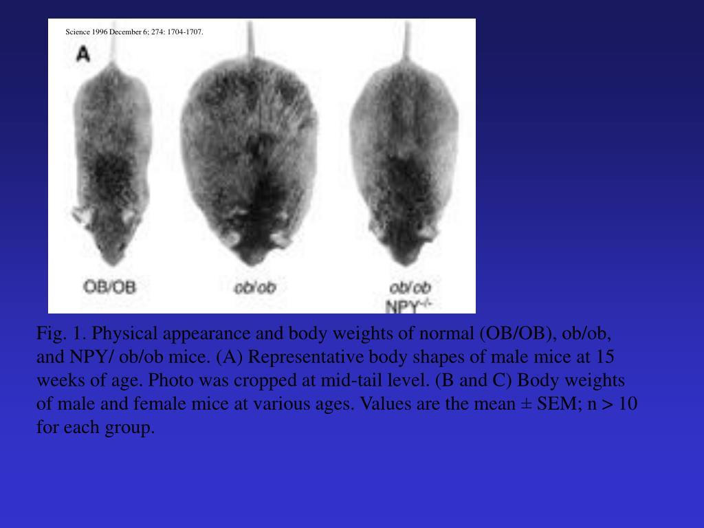 Science 1996 December 6; 274: 1704-1707.