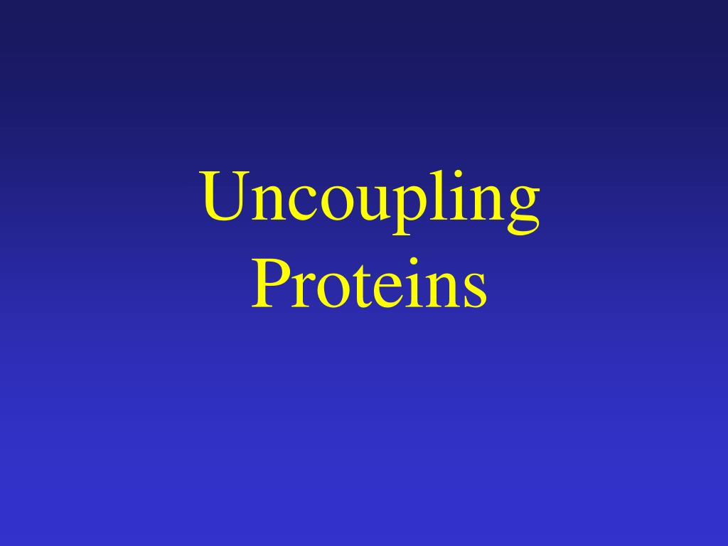 Uncoupling Proteins