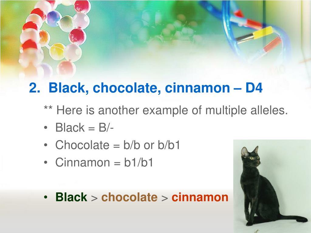 2.  Black, chocolate, cinnamon – D4
