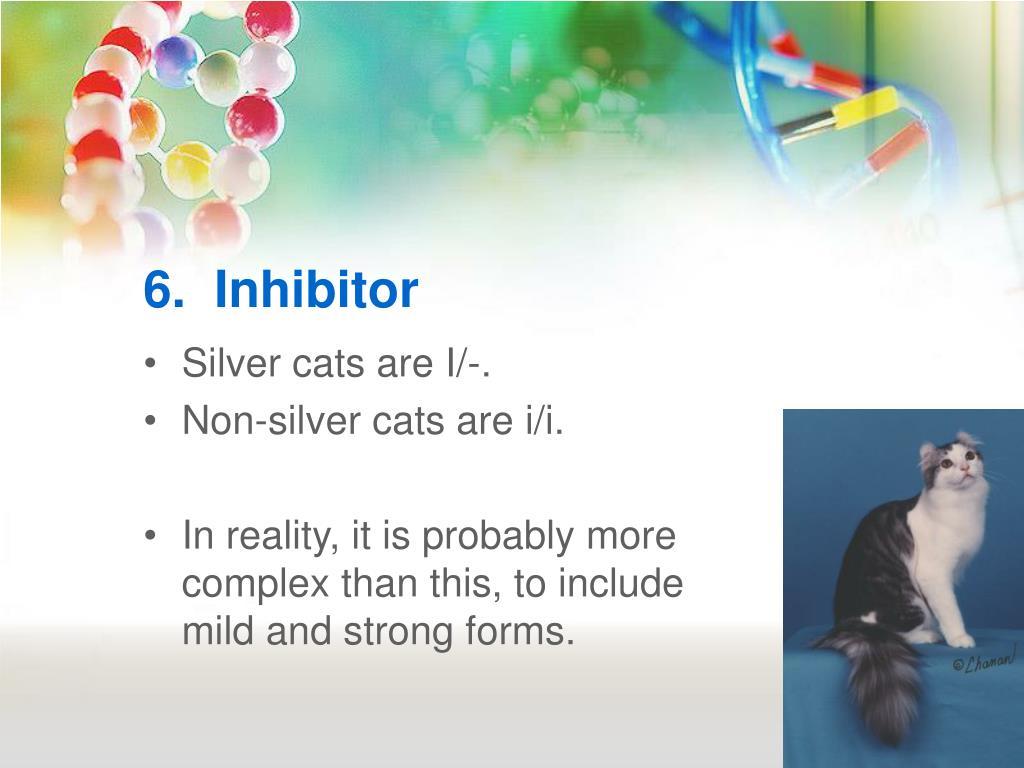 6.  Inhibitor