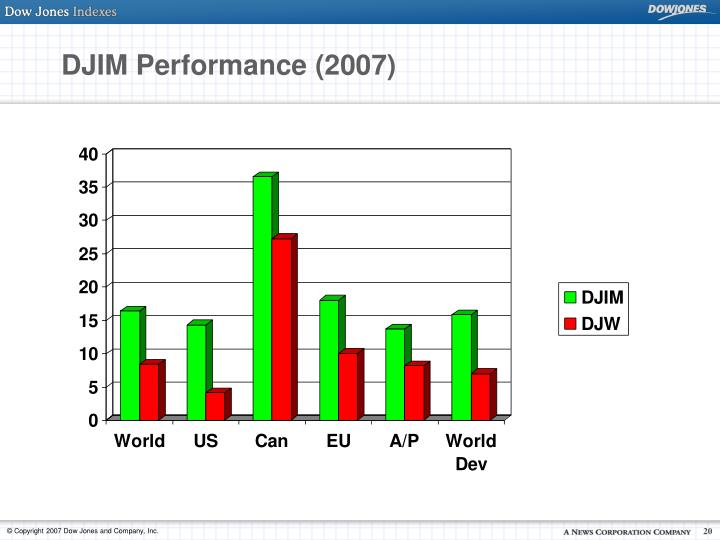 DJIM Performance (2007)