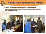 strengths 1 business skills training