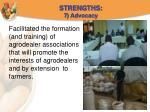strengths 7 advocacy