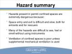 hazard summary