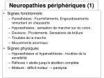 neuropathies p riph riques 1
