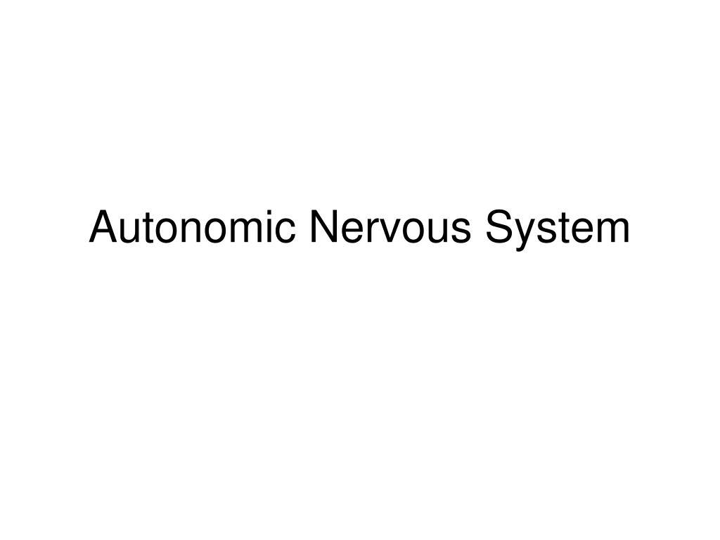 autonomic nervous system l.