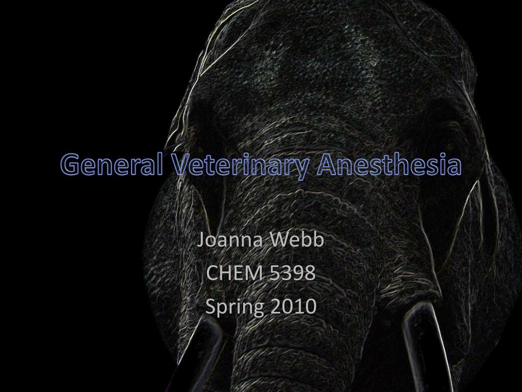general veterinary anesthesia l.