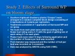 study 2 effects of surround wp on bloom stage