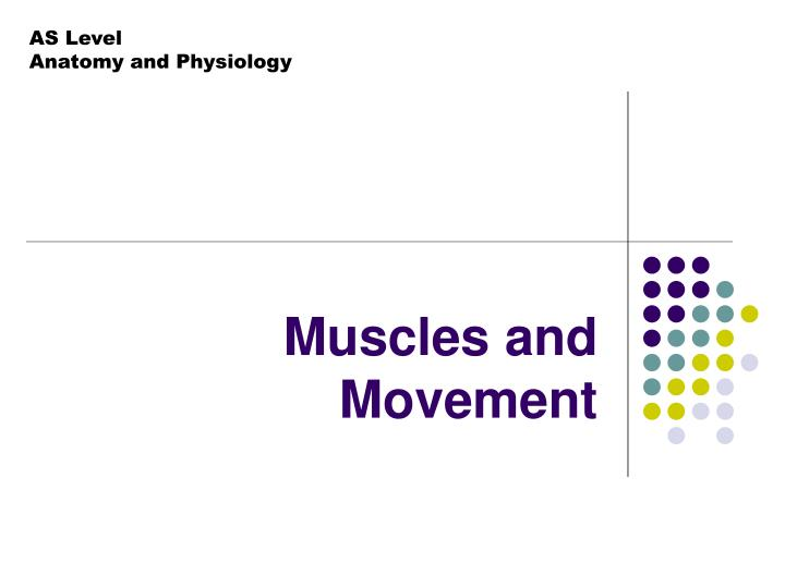 muscles and movement n.