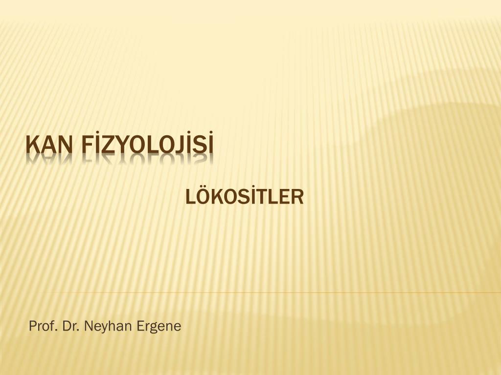 prof dr neyhan ergene l.